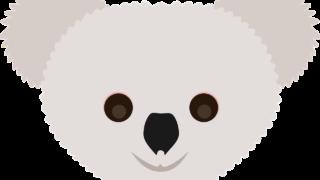 コアラが絶滅?!Saving Koala Monthとは?